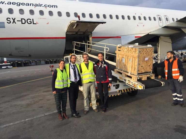 Έμαθαν τι έκρυβε η ξύλινη κατασκευή που μπήκε στο αεροπλάνο και οι εικόνες σάρωσαν το διαδίκτυο [pics]