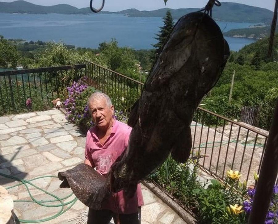 Ψάρι 70 κιλών αλίευσε Καρδιτσιώτης στη Λίμνη Πλαστήρα - ΦΩΤΟ