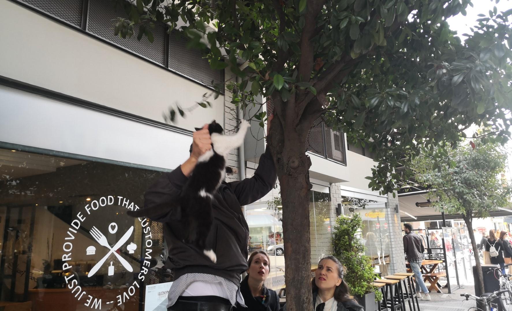 Τρίκαλα: Διάσωση γάτας απ' τον… θρυλικό καφετζή της Καποδιστρίου!!!