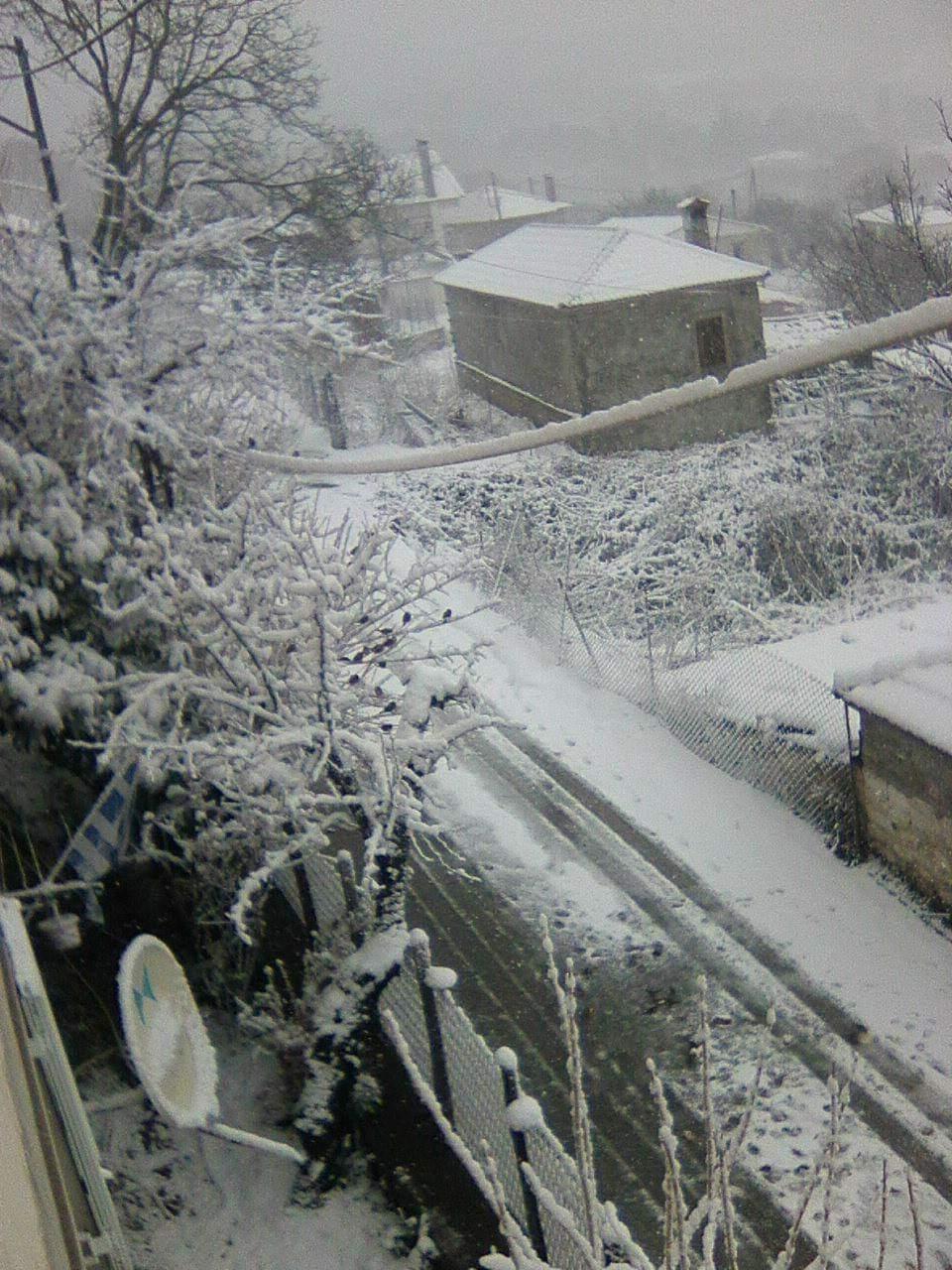 received 677904339622211 - Στα λευκά τα ορεινά του νομού Λάρισας (φωτο)
