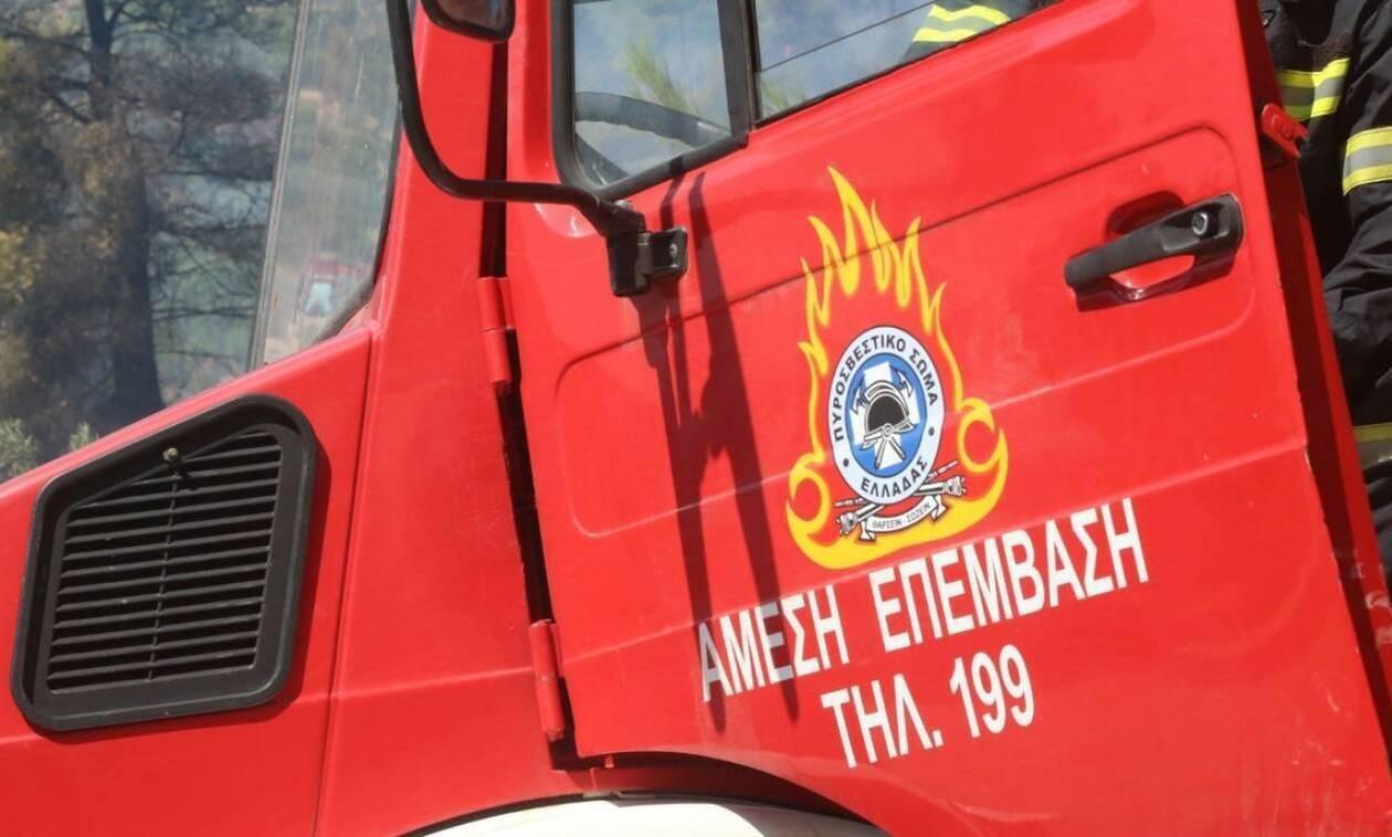 Δήμος Φαρσάλων: Καύσωνας - κίνδυνος πρόκλησης δασικών πυρκαγιών