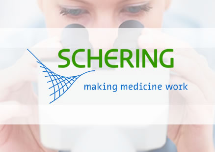 Larmer Brown Case Study - Schering Healthcare