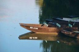 Venise-verte-barques-1