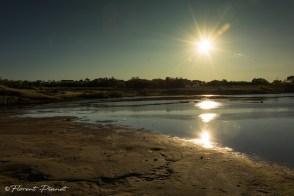 Soleil couchant sur la lagune