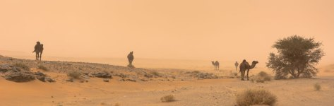 vent de sable. erg Chebbi