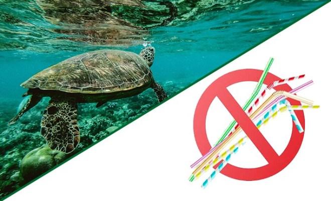 Vamos acabar com o uso dos canudos de plástico