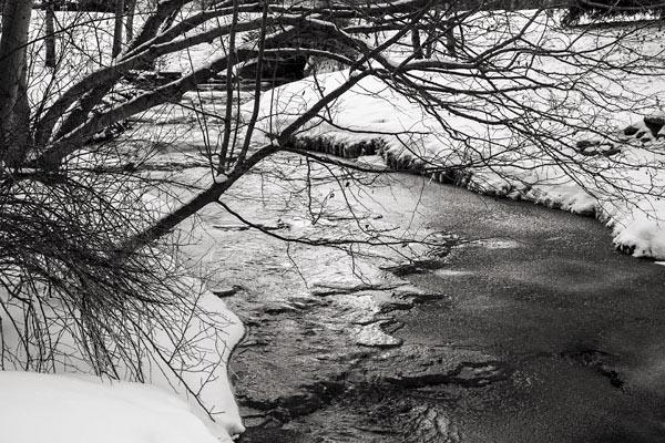 POTD: Up the Creek