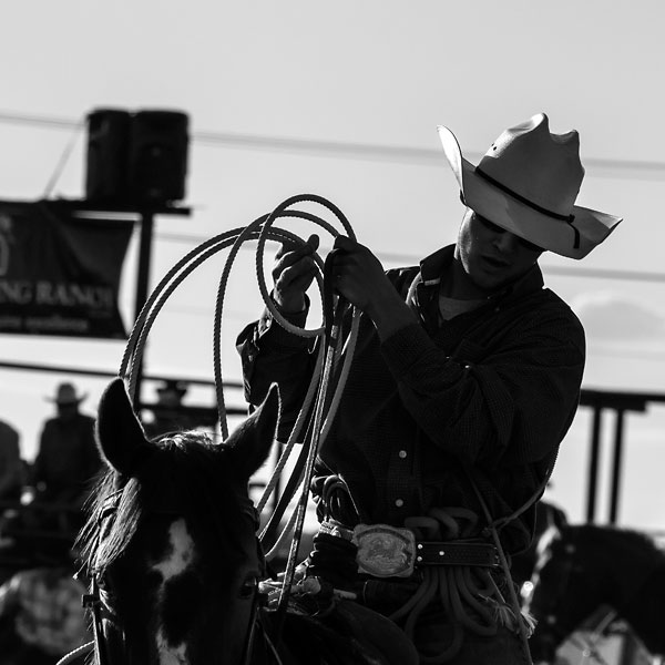 POTD: Ropes and Reins