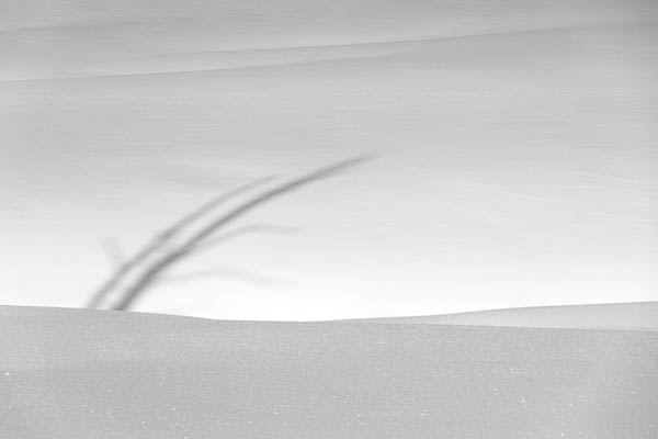POTD: Snow Shadows #2