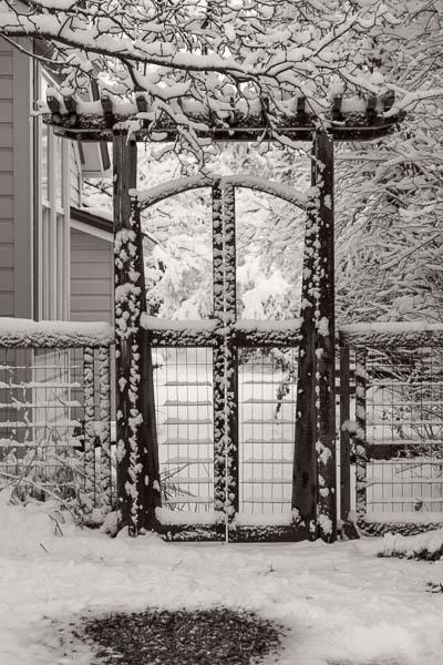 POTD: Gateway to Winter