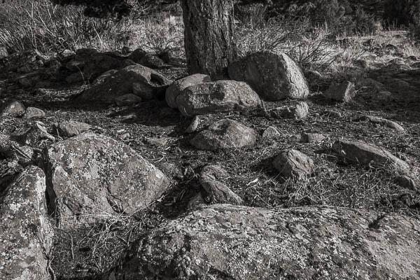 POTD: Rock Garden