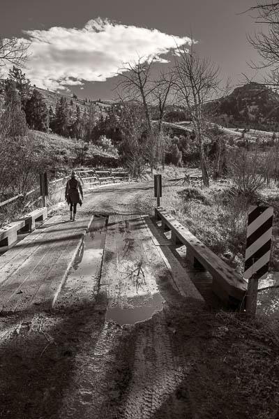POTD: Mirror Bridge