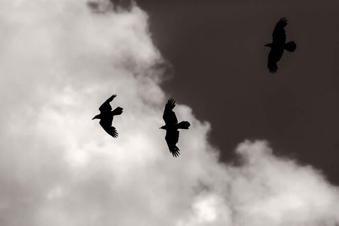 POTD: Chasing Clouds