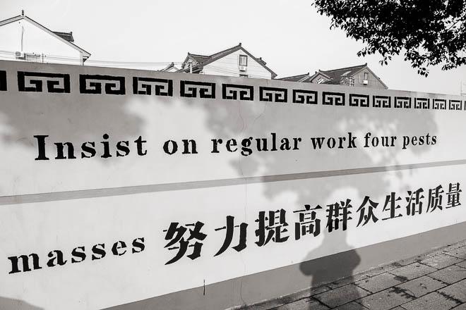 POTD: Lost in Translation