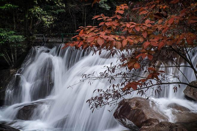 POTD: Fall at the Falls
