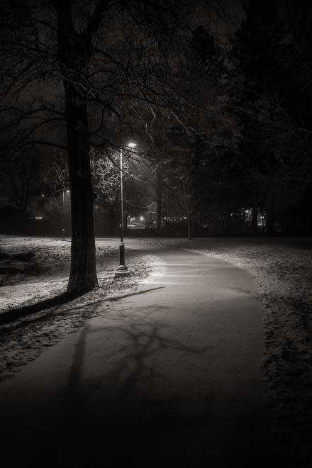 POTD: Night Walk