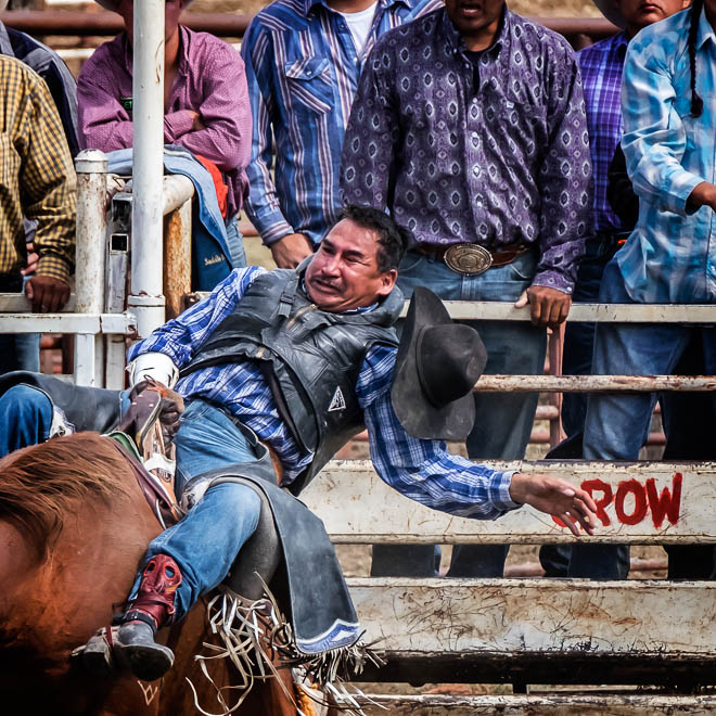 POTD: Rodeo Faces #1