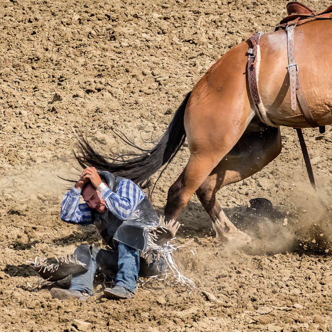 POTD: Rodeo Faces #3