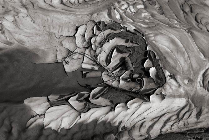 POTD: Mud Abstract #1
