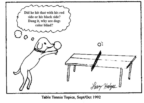 Table Tennis Magazine Why Dogs Don T Like Combination Rackets
