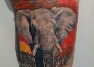 Elefante tatuado