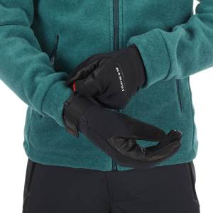 astro guide mammut