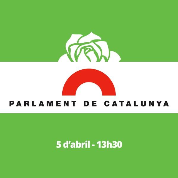 Parlamento de Cataluña valida la ILP La Rosa Verda con 54807 firmas