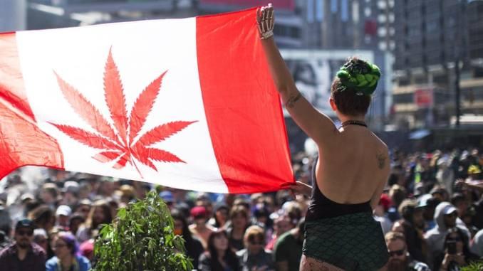 Canadá da último paso para legalizar la marihuana ¿España seguirá el camino?