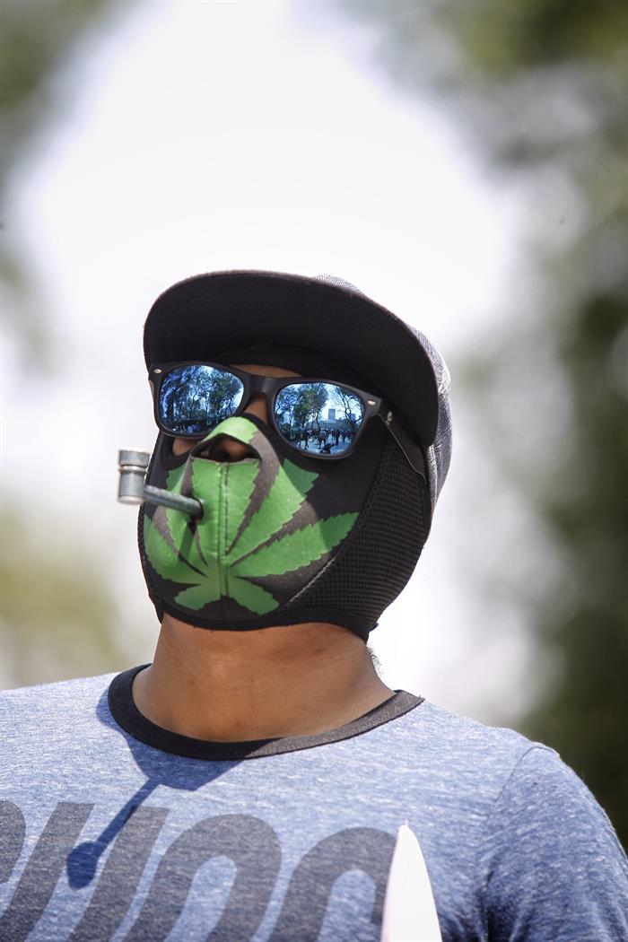 La marihuana avanza a través de la Magistratura Judicial en México