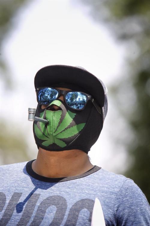 La marihuana avanza a través de la Magistratura Judicial en México - Foto EFE