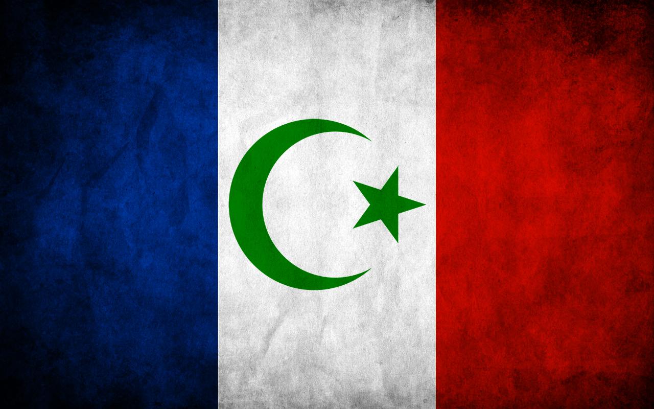 La France sera mahomète et athée ! - Page 11 Islam-miniature
