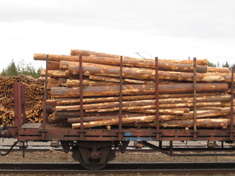 lumber supplies