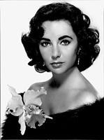 mi morena foto de Elizabeth Taylor del Garbo al Hollywood dorado