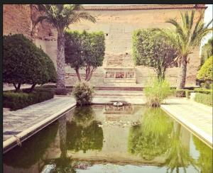 mi morena Sentir el Sur mi sur patio de la Alcazada de Almería