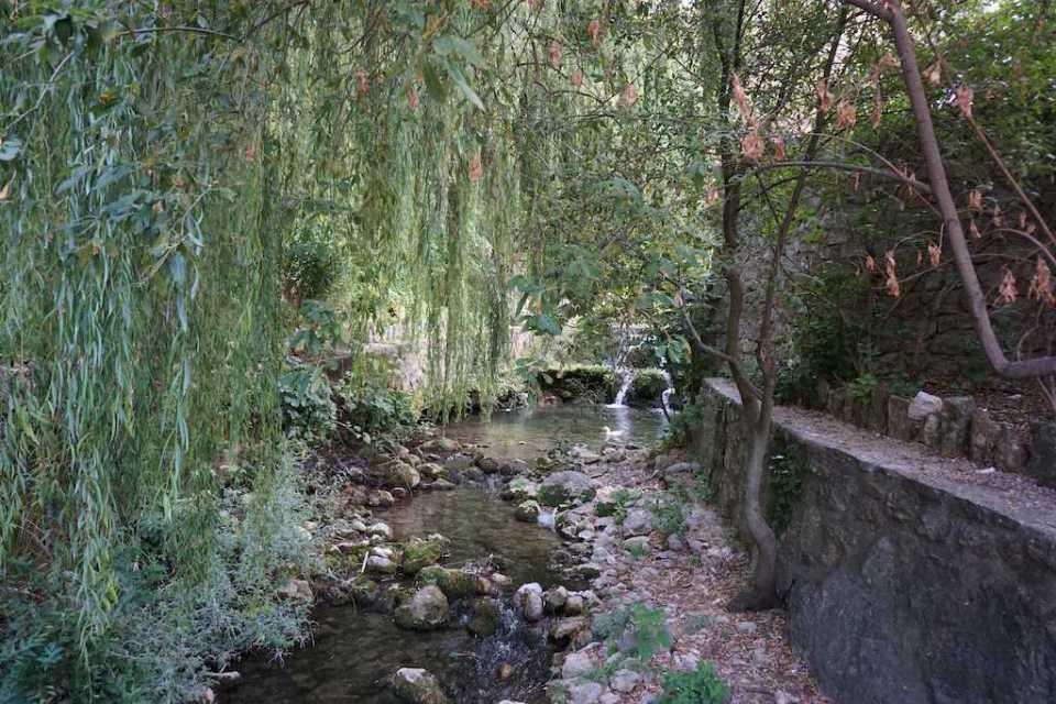 Mi morena en el río Cazorla