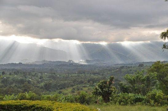 Mi morena Coltán el maldito oro negro África
