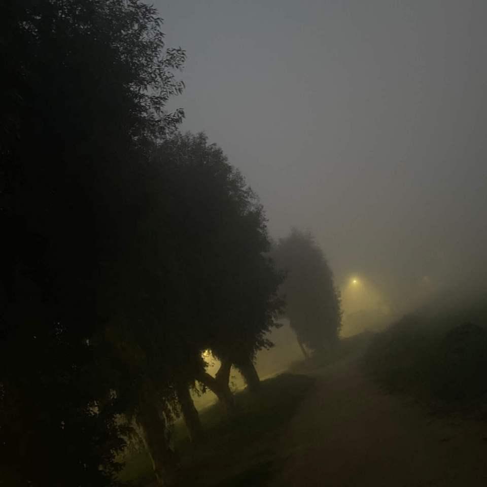 Mi morena ¿Os gusta la niebla? camino