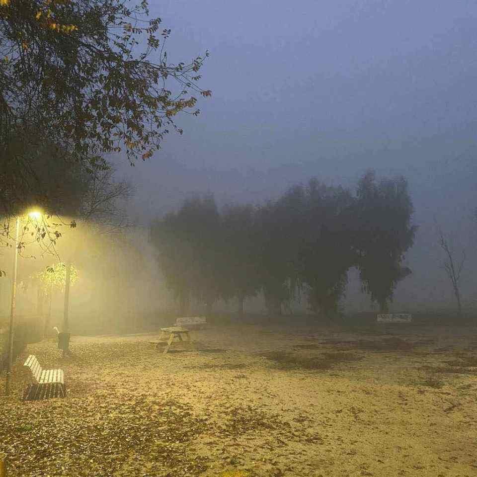Mi morena ¿Os gusta la niebla? parque