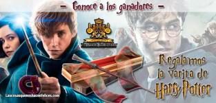 Ya tenemos los ganadores de la varita de Harry Potter de la colección The Noble Collection