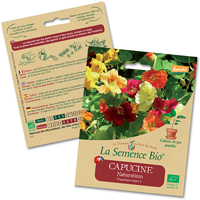 fleur bio - LA semence bio