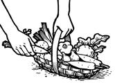 panier legumes La semence bio