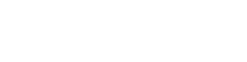 The Ontario Arts Council