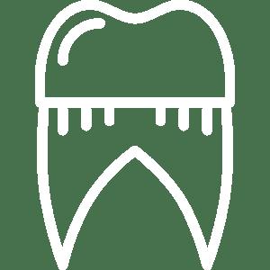Dental<br> Crowns
