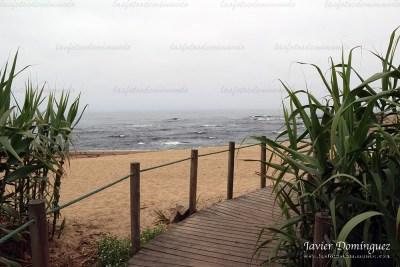 camino hacia la arena