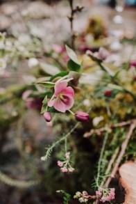 fleurs-pays-basque