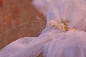 robe-de-mariee-fleurs-bebas-viola (2)