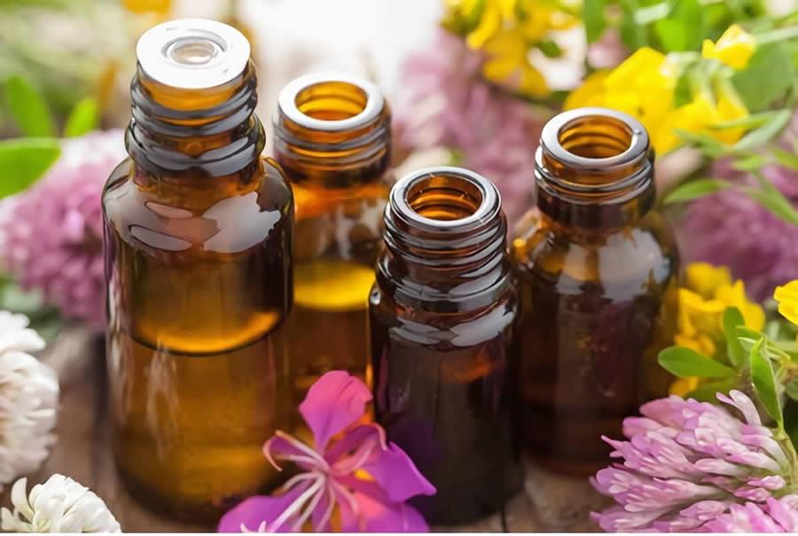 Para qué sirven los yuyos y plantas medicinales