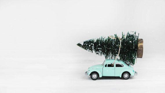Cosa significa raggiungere il sud a Natale