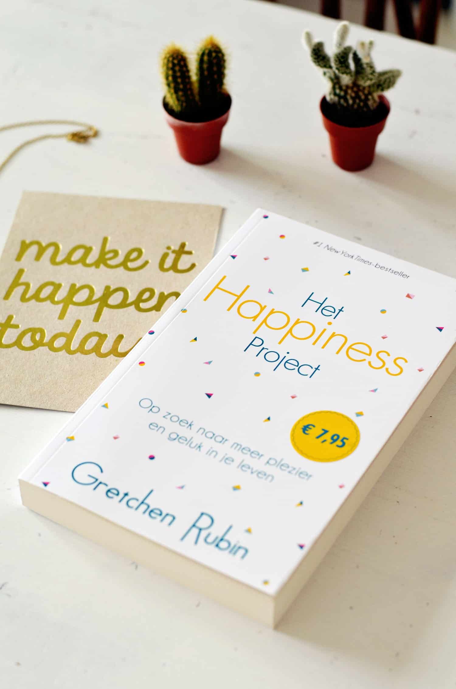 Boek: Het Happiness Project