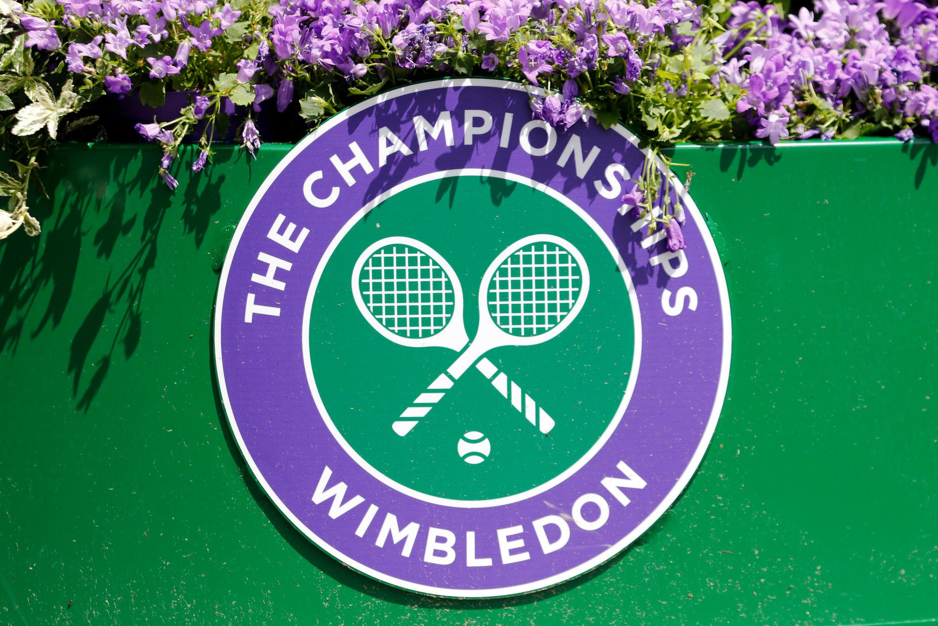 Image result for wimbledon 2017